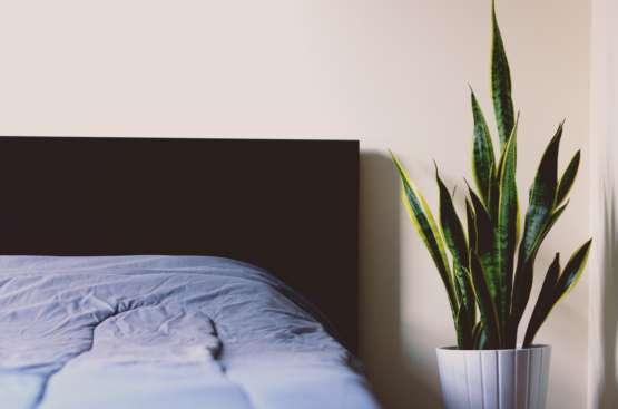 Hypnose bei Stress und Schlafstörungen